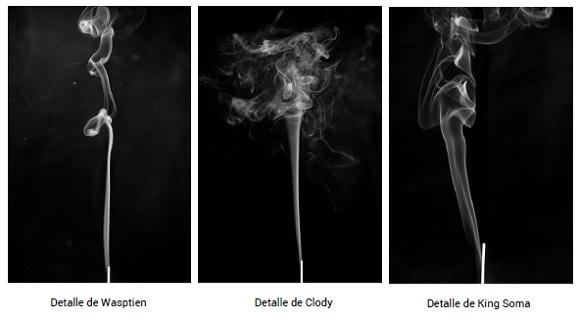 SmokeAlien proceso